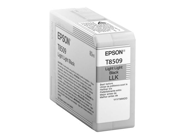 Epson Tintenpatronen C13T850900 1