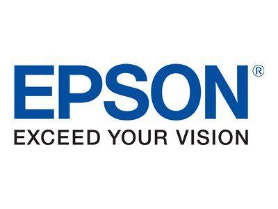 Epson Tintenpatronen C33S020484 2